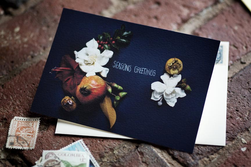 Creative Still Life Photography from Kari Herer - Fox and Flower on Etsy http://www.etsy.com/shop/kariherer
