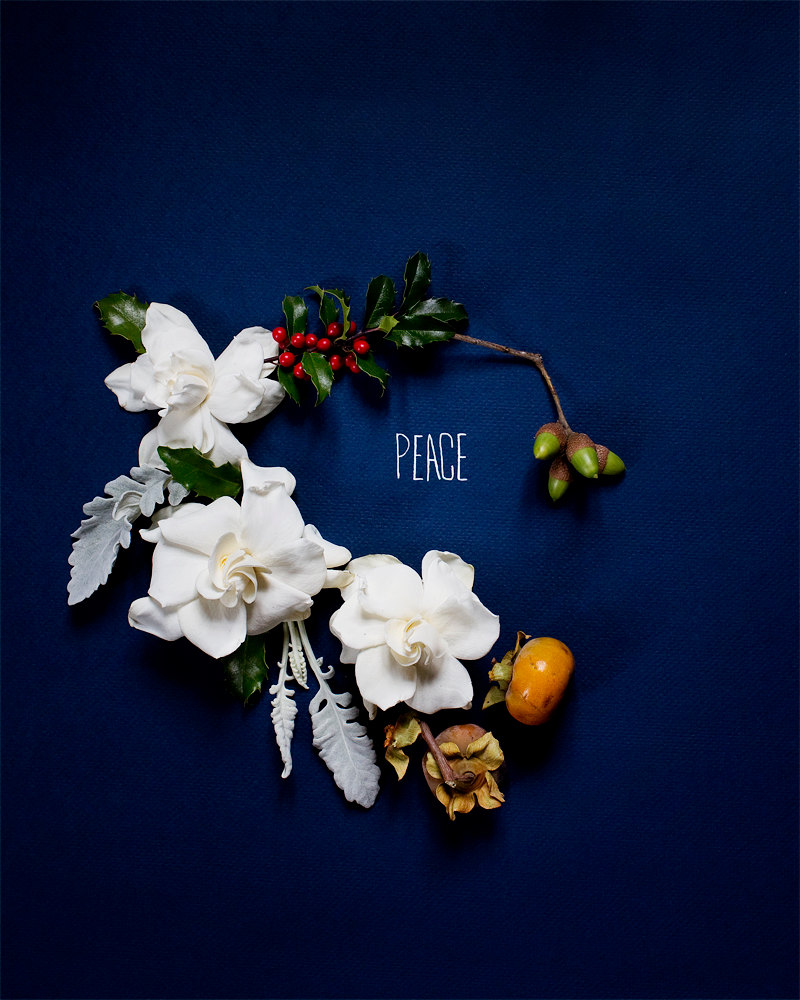 Creative Still Life Photography from Kari Herer - Holiday Peace - http://www.etsy.com/listing/114747333/holiday-peace