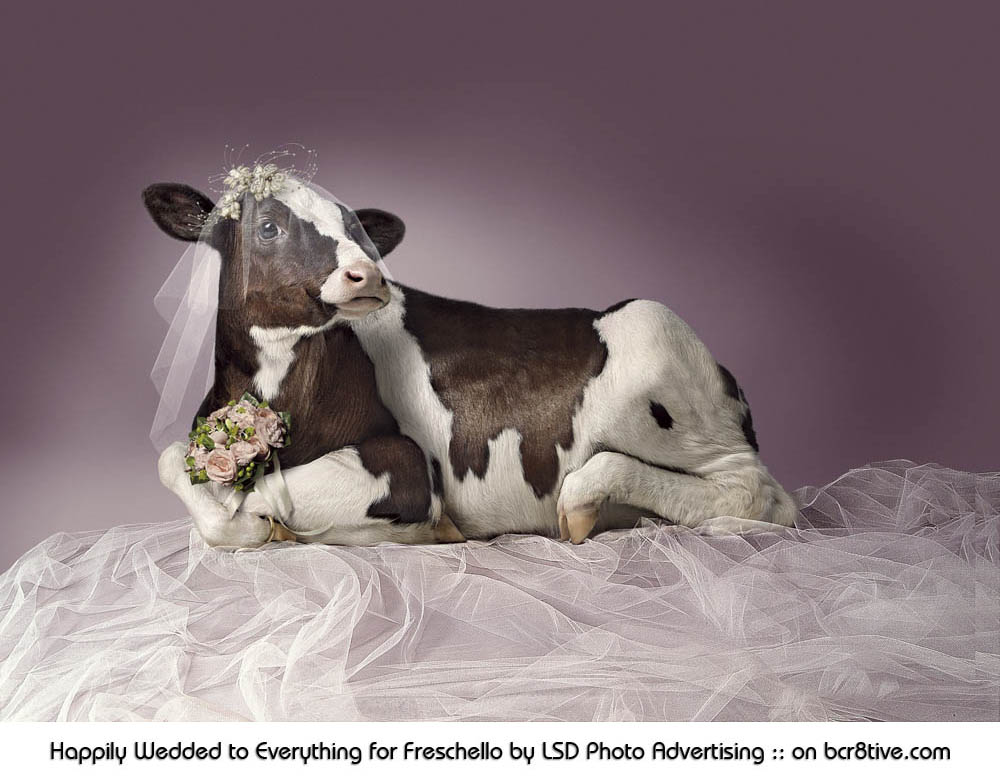 Happily Wedded to Everything for Freschello by LSD Photo Advertising Studio