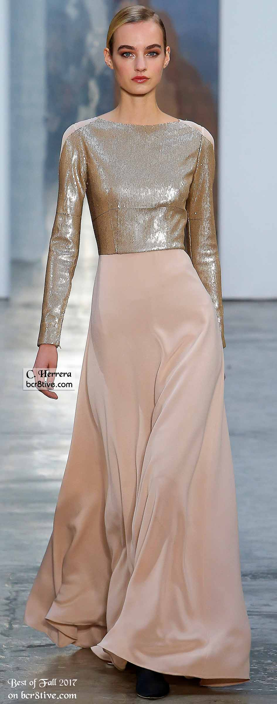 Carolina Herrera Fall 2017