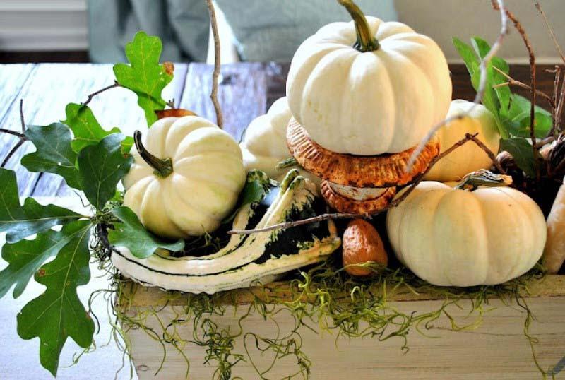Kristen's Fall Pumpkin Centerpiece